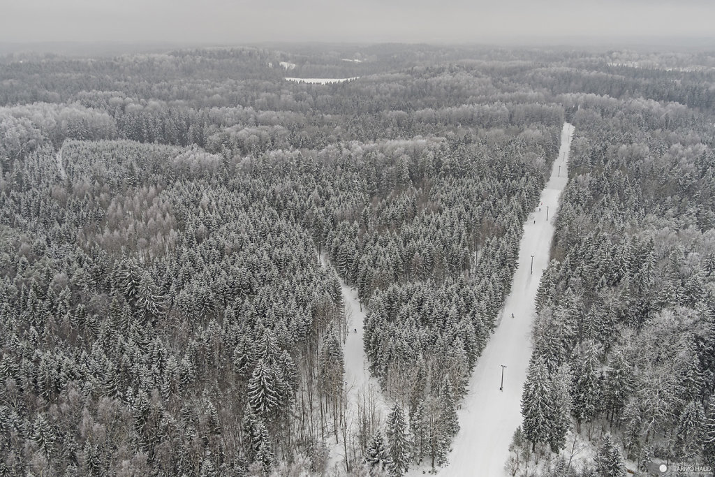 Haanja cross-country ski tracks